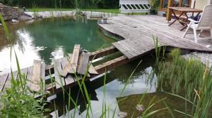 Maschinenring-Brücke nach nur 4 Jahren. Fichtenunterbau (!) völlig morsch. (Beauftragt war Lärchenholzunterlattung)